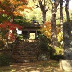東北の紅葉見頃ゴールデンレトリバーと行く黒森山浄仙寺